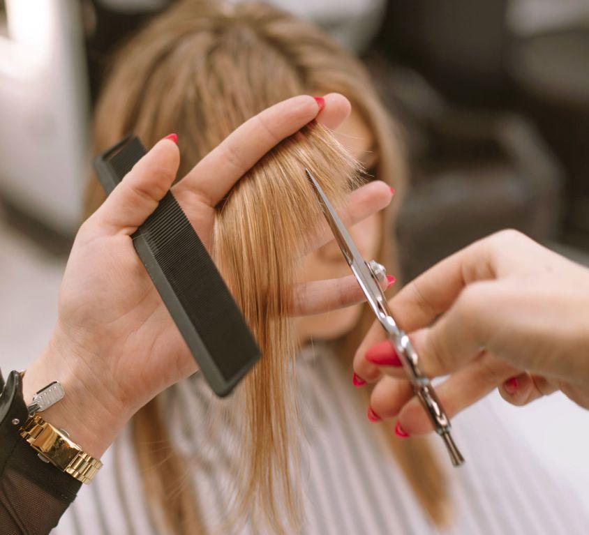 HAIR CUTTING SERVICES (Demo)